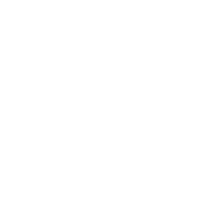 logo world impact summit